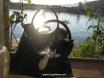 Handbag cat