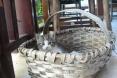 kalkan cats