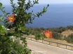 View at Adams Restaurant towards KAS