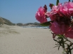 The Fabulous Patara Beach - June 2012
