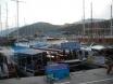 Boat Trip boats