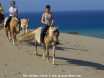 Horse Riding on Patara Beach