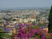 Spring in San Miguel de Allende